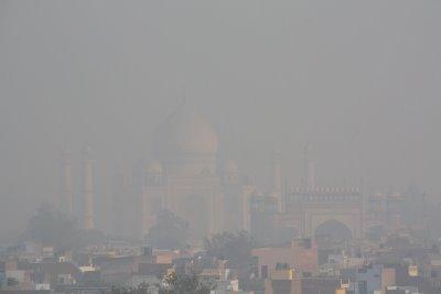 Taj Mahal, covered in environmental pollution